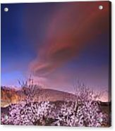 Lenticular Clouds Over Almond Trees Acrylic Print