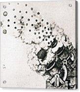 Leonardo: Cannon Acrylic Print