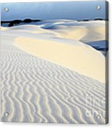 Leoncois Maranhenses Beauty Of Sand Acrylic Print