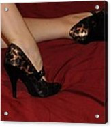 Leopard Shoes Acrylic Print