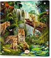 Leopards Acrylic Print
