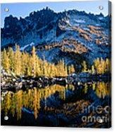 Leprechaun Lake Larch Trees Acrylic Print
