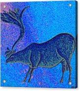 Les Combarelles Reindeer  Acrylic Print