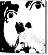Selfie Circa 2005 Acrylic Print