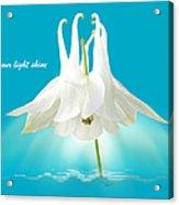 Let Your Light Shine Acrylic Print by Gill Billington