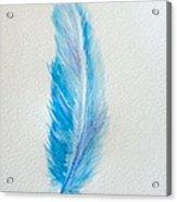 Let's Fly Away  Acrylic Print