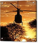 Lets Fly Acrylic Print