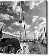 Let's Go Sailing Acrylic Print