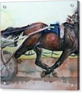 Racehorse Painting In Watercolor Let's Roll Acrylic Print