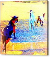 Lets Run Away From Everything And Start A New Life  Acrylic Print