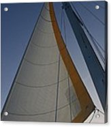 Let's Sail Acrylic Print