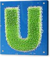 letter U underwater with bubbles Acrylic Print