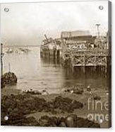 Lewis Fish Market Selected Fresh Fish And Swains Fish Market Monterey 1929 Acrylic Print
