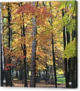 Lexington Park Acrylic Print