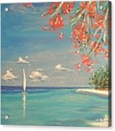 Liberty Acrylic Print by The Beach  Dreamer