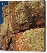 Lichen On Boulders Acrylic Print