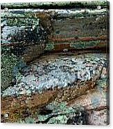 Lichen On The Rocks-1 Acrylic Print