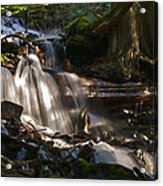 Life Begins To Flow Acrylic Print