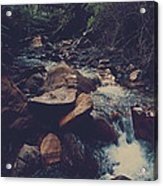 Life Flows On Acrylic Print by Laurie Search