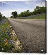 Life Is A Highway  Acrylic Print by Lynn Bauer