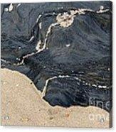 Life On The Beach Acrylic Print
