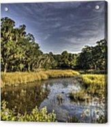 Life On The Marsh Acrylic Print
