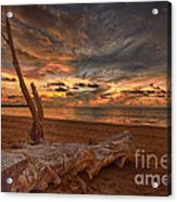Life's A Beach Acrylic Print by Pete Reynolds