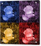Life's Colors Acrylic Print