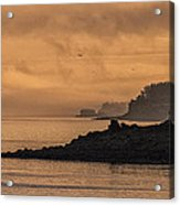 Lifting Fog At Sunrise On Campobello Coastline Acrylic Print