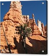 Light And Shadow In The Bryce Canyon  Acrylic Print