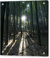 Light At The End Acrylic Print