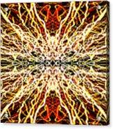 Light Fantastic 28 Acrylic Print