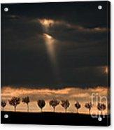 Light From The Sky Acrylic Print