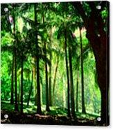 Light In The Jungles. Viridian Greens. Mauritius Acrylic Print