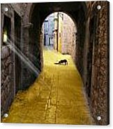 Light In The Tunnel Acrylic Print