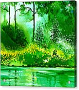 Light N Greens R Acrylic Print