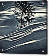 Light On The Snow Acrylic Print