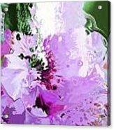 Light Pink Flower Acrylic Print