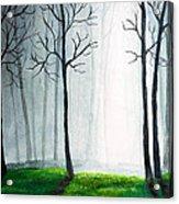 Light Through The Forest Acrylic Print