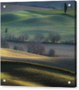 Light Transition Acrylic Print