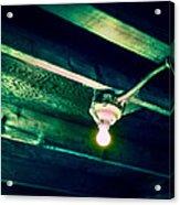 Lightbulb And Cobwebs Acrylic Print