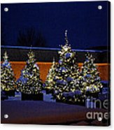 Lighted Trees With Snow Acrylic Print