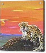 Lil' Leopard Acrylic Print
