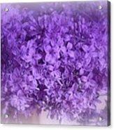 Lilac Fantasy Acrylic Print
