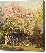 Lilac In The Sun, 1873 Acrylic Print