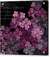 Lilacs Acrylic Print by Sylvia Thornton