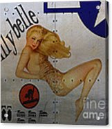 Lillybelle Nose Art Acrylic Print by Cinema Photography