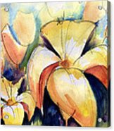 Lillys With Birds Acrylic Print