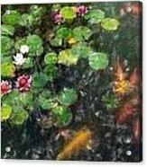 Lily 0147 - Light Colored Pencil Sl Acrylic Print