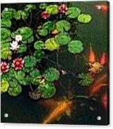 Lily 0147 - Watercolor 1 Sl Acrylic Print